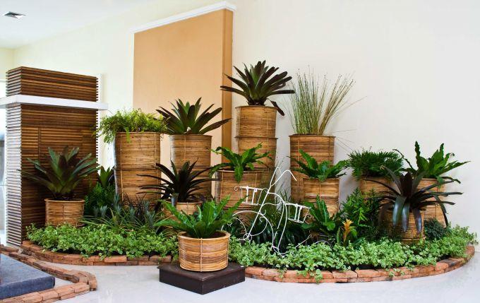 Какие комнатные растения требуют меньше всего ухода