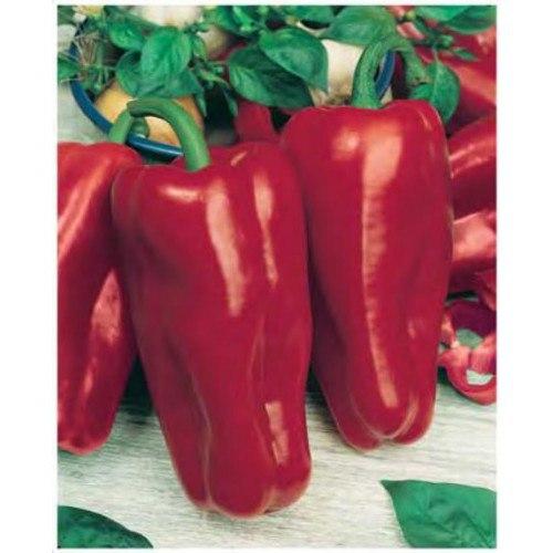 Какие сорта перца дают самые крупные плоды