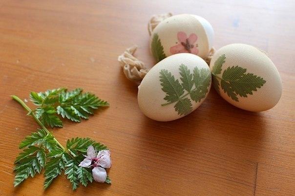 Как покрасить яйца к Пасхе: 7 способов
