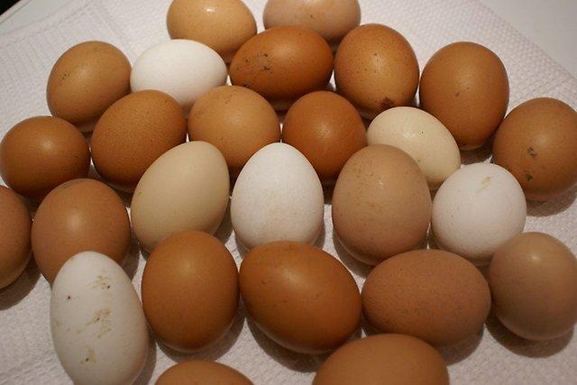 Как приготовить яйца: несколько рецептов