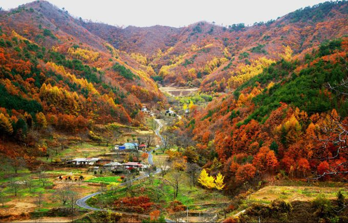 Южная Корея осенью