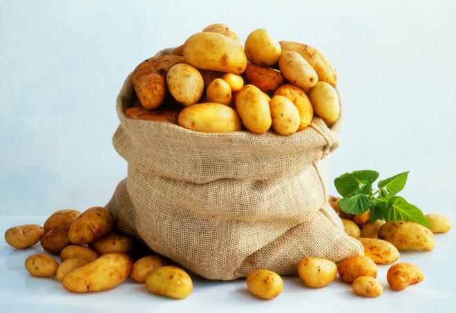 Картофель: вред или польза для организма человека?