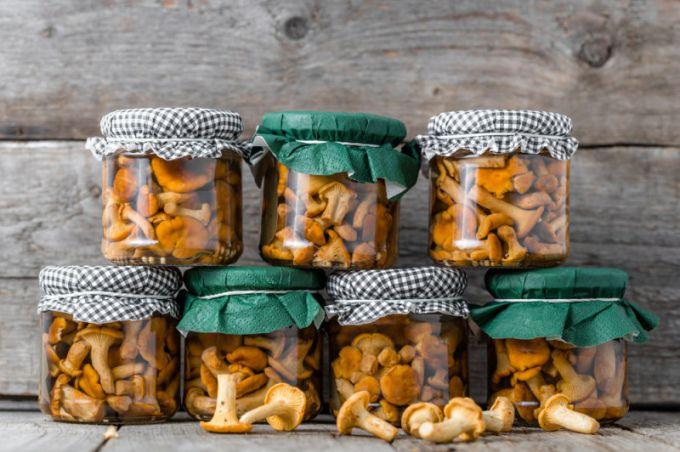 Маринованные лисички: рецепты с фото для легкого приготовления