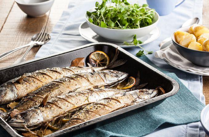 Скумбрия - полезная и вкусная рыба