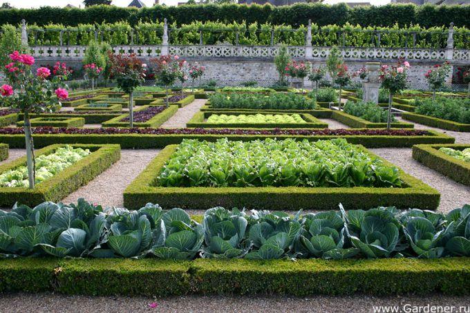 Французский сад своими руками фото 728