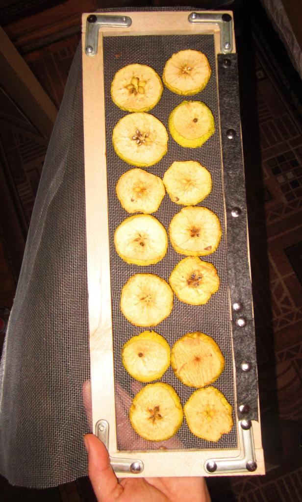 Как сушить яблоки, фрукты и овощи с помощью батареи