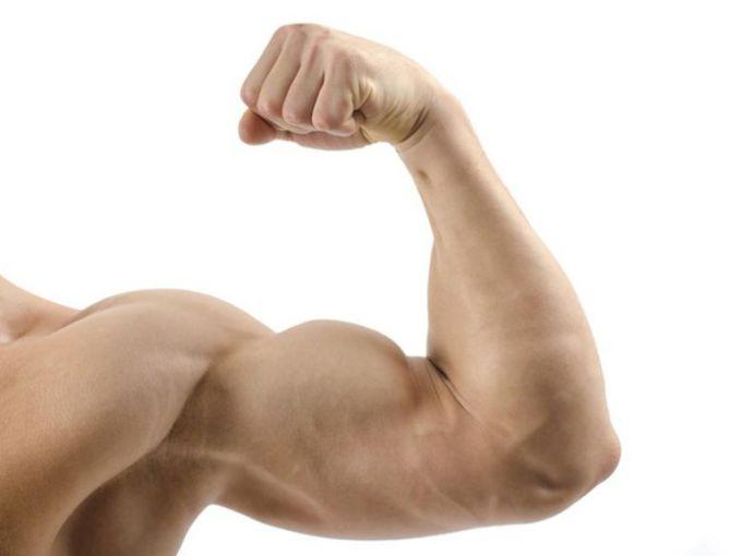 Как накачать бицепс: три лучших упражнения
