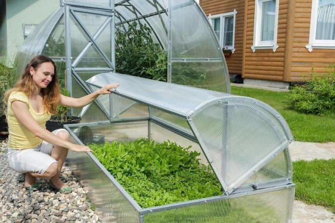 Как дешево сделать зимнюю теплицу для выращивания рассады