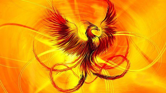 Феникс – птица, которая символизирует вечное обновление и бессмертие