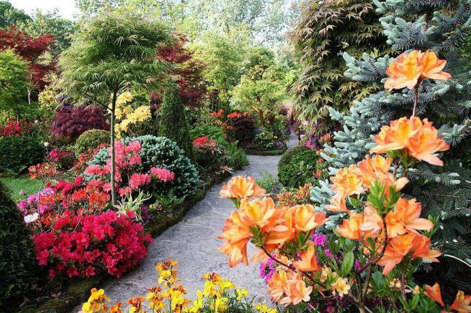 Как разабить английский сад