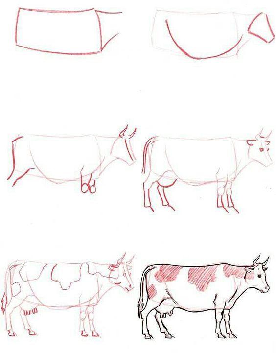 Как нарисовать корову с помощью карандаша