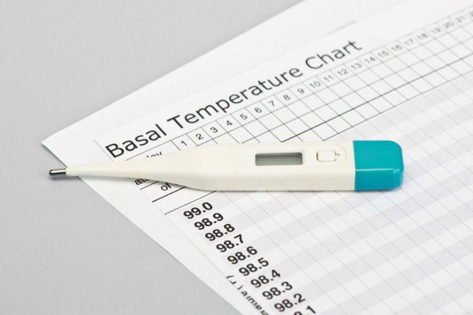 Зачем нужно измерять базальную температуру при планировании беременности