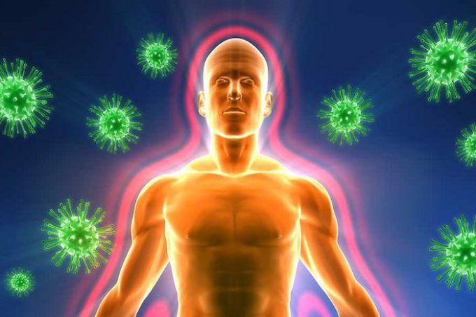 Адаптивный иммунитет: описание, виды, особенности