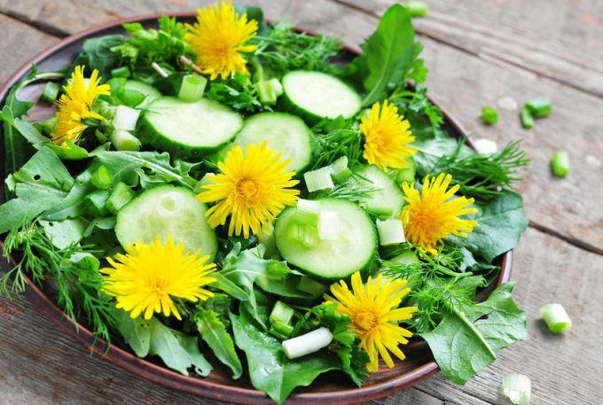 Салат из одуванчиков и свежих огурцов – витаминная бомба