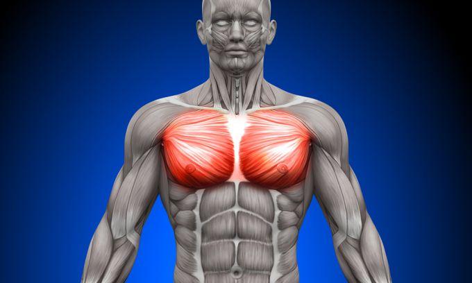 Идеальное упражнение для грудных мышц, или как накачать грудные мышцы