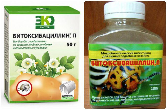 «Битоксибациллин» - прекрасное средство для избавления от различных садово-огородных насекомых-вредителей