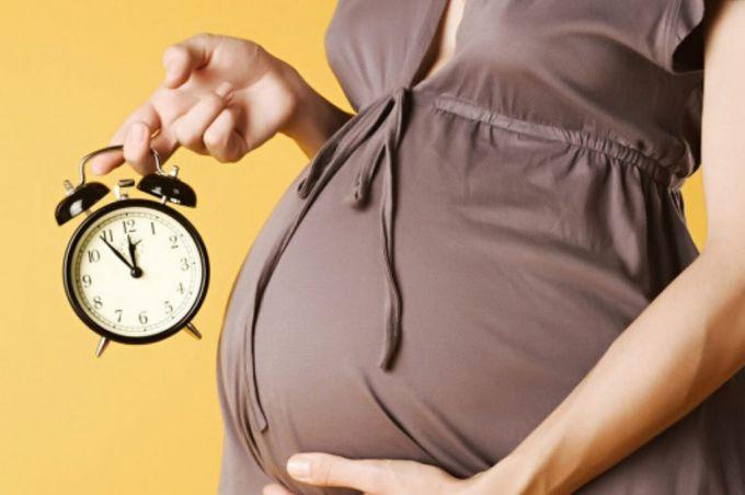 Отпуск по беременности и родам: основания, сроки, порядок предоставления