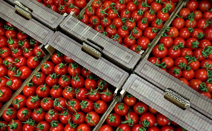 Почему Россия ввела запрет на ввоз томатов и яблок из Азербайджана