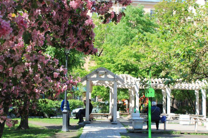 Как выглядит «Сад Дружбы» в Санкт-Петербурге и где он находится