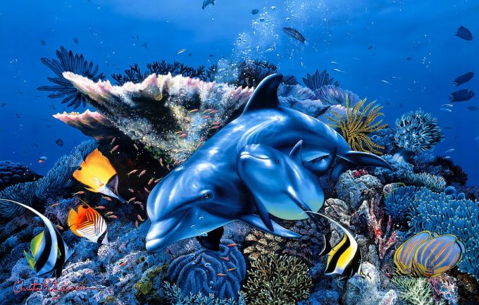 Погружаемся в подводный мир с малышом