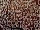 Что такое лингвистика