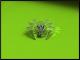 Как обновить антивирус Доктор веб