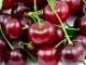 Как сварить варенье из вишни без косточек