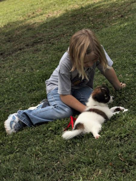 как научиться понимать животных
