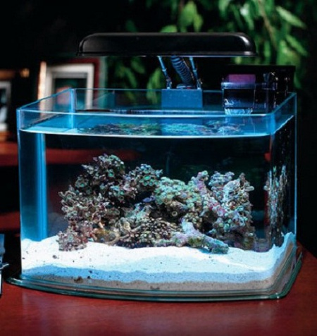 как поменять рыбкам воздух в аквариуме