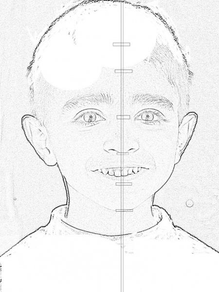 Наметьте положение ушей, глаз, носа и рта