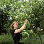 Elena-Dorogaya